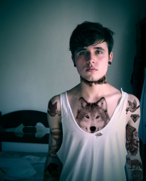 wolveswolves:  For some reason that wolf looks photoshopped  Wolf shirts are a thing of the past.