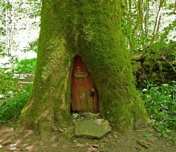 secretdreamlife:  My very own hobbit hole. http://secretdreamlife.tumblr.com