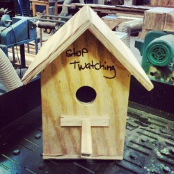 Finished my bird house :) (Taken with Instagram)