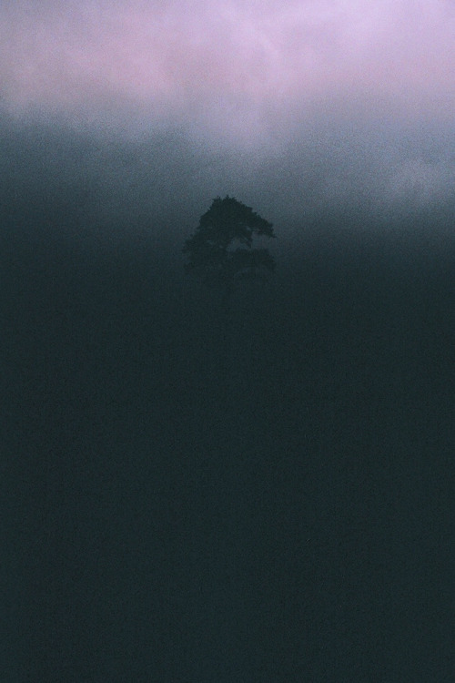 deadscope:  by Gabriel Green