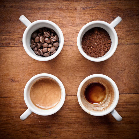 Coffee stages in four cups!