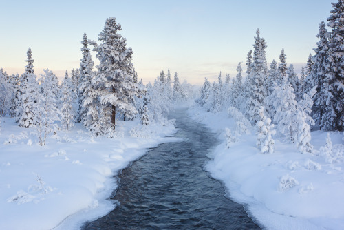 snow-shades:  Hot Water (by Joe Rainbow)
