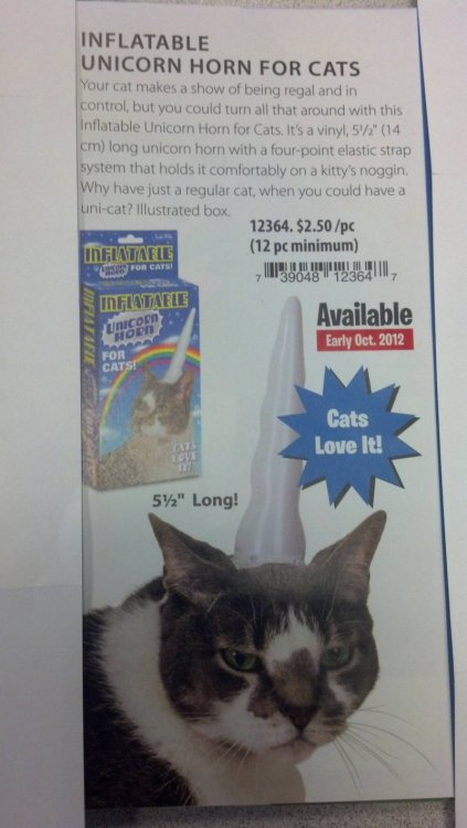 collegehumor:  Turn Your Cat into a Unicorn Cats love it, but hate you.