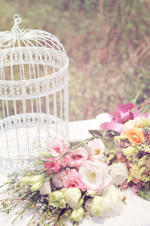 Florals and Bird Cage (by Natsuki Photography)