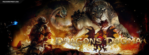 Dragons Dogma Facebook Covers