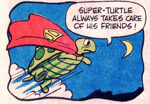 onepanel:  Super Turtle