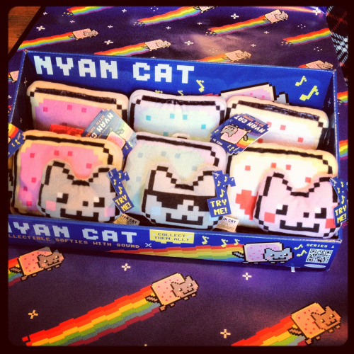Seriously can't wait to see Nyan Cat plush in stores soon!  Edit: I've seen people asking about the music, and I'd be happy to clarify.  I've contacted the owners of the song and am personally licensing out the music with my own money.  So my image with the official music is being used legit.  I wanted to make sure the plush was musical because the two go hand-in-hand.  Saraj00n is also working with us on this project, too!  I think the Nyan Cat plush is a great example on how people can come together to make dreams come true.