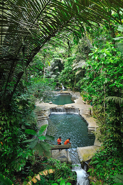 visitheworld:  Natural thermal pools at Hidden Valley Springs in Philippines (by Alexandros Dimitriou).