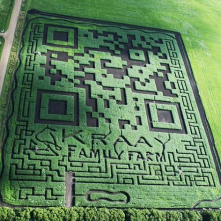 (The world's largest QR code in the cornfield | I New Idea Homepageから)
