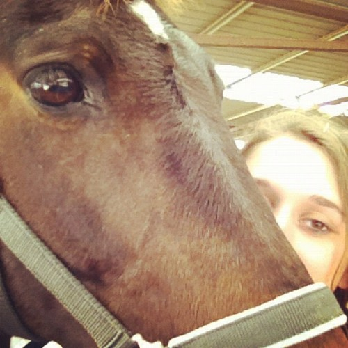 #horse #farm #kisses #kissing (Taken with Instagram)
