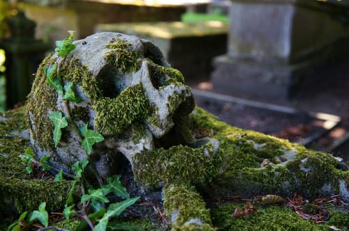 situation-s:  2012-08-12 Skull revisited by [ henning ] on Flickr.
