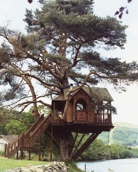 pussyfordinner:  treeporn:  Tree House in Scotland. (The Lodge on Loch Goil)  for amber