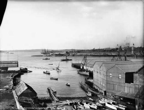 suburbanastronaut:  Sydney Harbour from Dawes Point, 1880