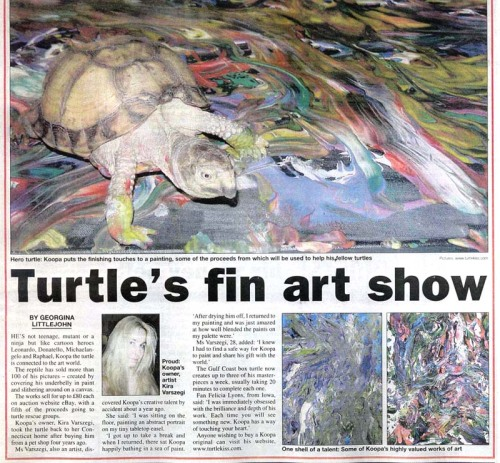 """Koopa the box turtle enjoyed a five year career as an artist, creating ""finger"" paintings by wandering across paint-laden canvases. A portion of the proceeds from Koopa's paintings benefited turtle charities. By the time he retired from painting, he had raised over $10,000."" From 10 Beautiful Things Created By Animals."