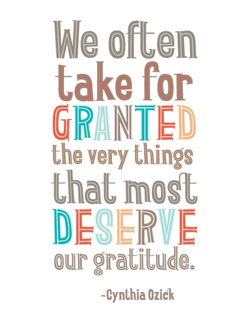"""We often take for granted the very things that deserve most of our gratitude."" - Cynthia Ozick, American novelist"