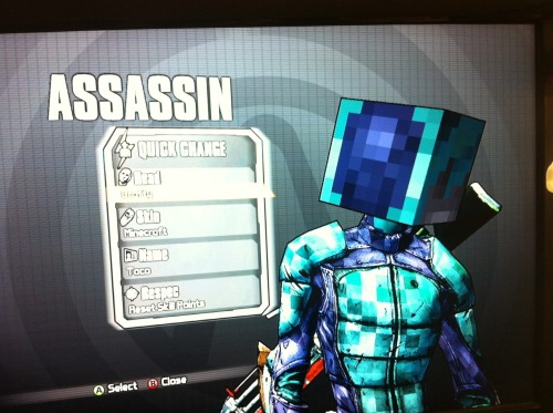 MineCraft Head and Skin C: Mission Success!