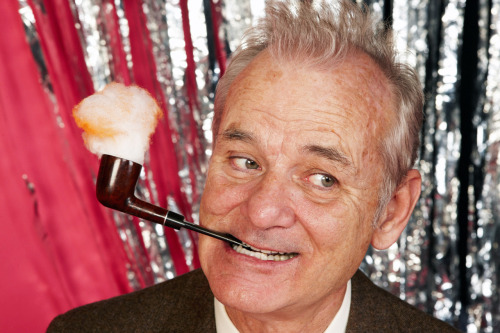 "pickledelephant:  Happy Birthday, William James ""Bill"" Murray!"
