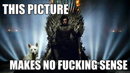 little-miss-mental:  Ghost…with Robb on the Iron Throne. WTF.  You know nothing. You don't even know what Jon Snow looks like.