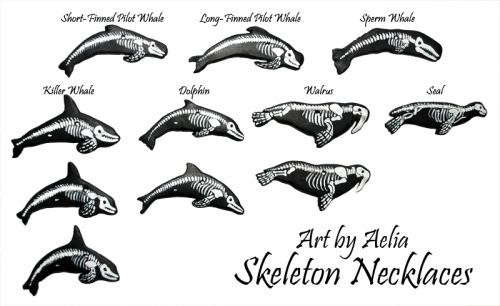 artbyaelia:  Skeleton Necklaces! Wanted to try out some different species… had a lot of fun with these! They are available for sale through my Facebook page, and will be on my Etsy page in the near future. $20 plus shipping!  http://www.facebook.com/ArtByAelia http://www.etsy.com/shop/ArtByAelia