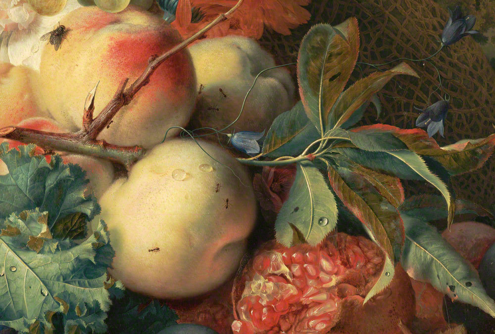 Fruit Piece (detail), Jan van Huysum, 1722. The J. Paul Getty Museum