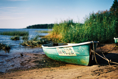 Summer by Kseniya Levi on Flickr.