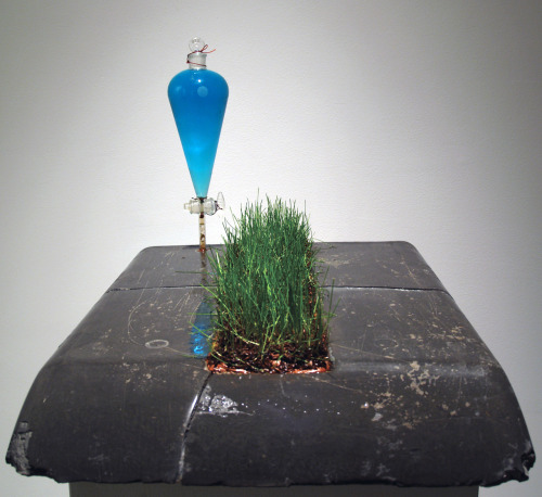 David Gallagher: Specific Ubiquity (Green Space), 2010, Portland Cement, Lab Glass, Miracle Grow, Unfired Iron Rich Clay, Grass