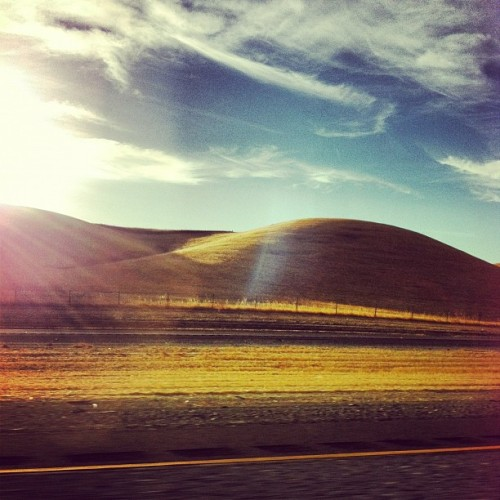 Golden Hills | #california #summer #golden #hills #blueskys #cloudporn #roadtrip  (Taken with Instagram at The Middle of Nowhere)
