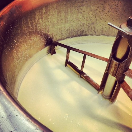 50 litres of  Inglenook Dairy's milk being made into a lovely yoghurt by  From Farm To Fork.   (Taken with Instagram at Melbourne Convention and Exhibition Centre)
