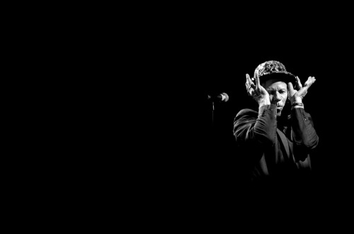 Tom Waits by Nicola Boccaccini
