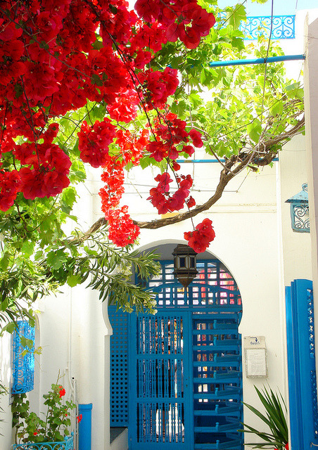 visitheworld:  Typical doorways of Sidi Bou Saïd, Tunisia (by henrye72).