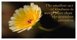 """The smallest act of kindness is worth more than the grandest intention."""