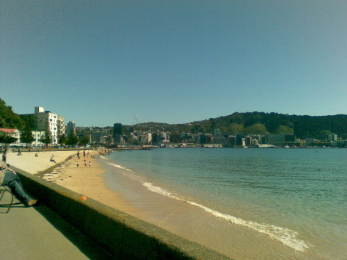 Spring '12 Oriental Bay yesterday. Spring has sprung. I guess daylight saving's not far away.