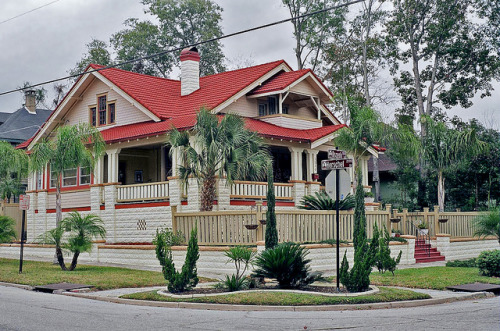Bungalow & Palm Trees, Riverside, Jacksonville by StevenM_61 on Flickr.