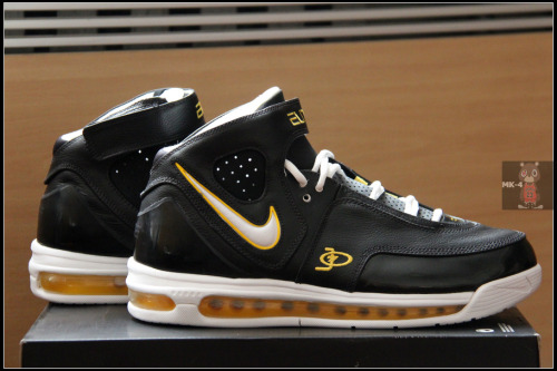 Air Max Elite TB (JERMAINE O'NEAL PE)