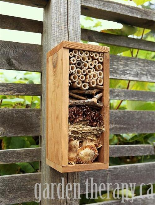 Bug Hotel {How to} Keep bugs safe during the winter! :D Found at: gardentherapy