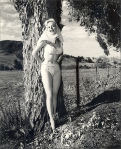 hollyhocksandtulips:  Betty Brosmer