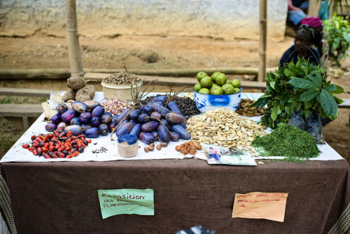 Market by CIFOR on Flickr.
