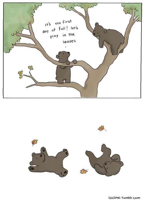 lizclimo:  fall is here! bigger leaf piles coming soon.