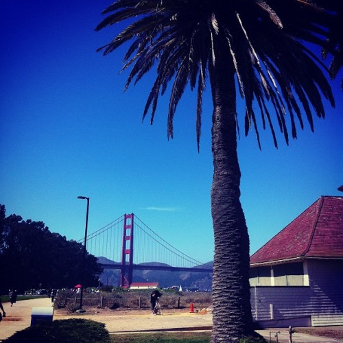 PHOTO of the day | September 28, 2012 | Presidio Promenade