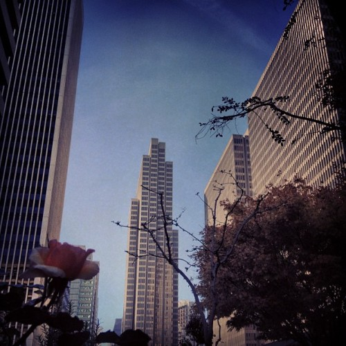 Almost done. (Taken with Instagram at Hyatt Regency San Francisco)