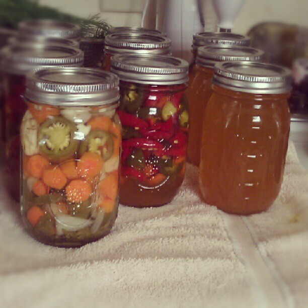 On the left, #pickled #jalapeno (#escabeche). The middle, #cowboycandy & on the right, #leftover cowboy candy #juice.  #freshfood #nogmo #canning #veggies #lovefromthekitchen (Taken with Instagram)