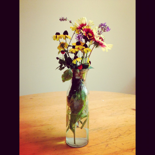 I picked wild flowers today :)