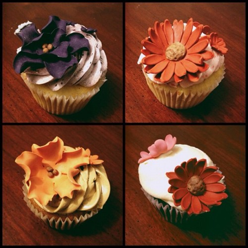#vscocam beautiful fall birthday cupcakes from the seester. :) thank you! (Taken with Instagram)