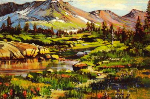 Bonita Paulis, Wild Western Landscapes exhibit at Bona Fide Books | received from South Lake Tahoe, July 2012