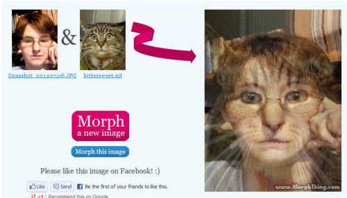 buttsosaurus:  pimpmypaws:  I morphed myself with my cat because fuck you I do what I want.  OH MY GOD I TRIED TO DO THIS MYSELF AND