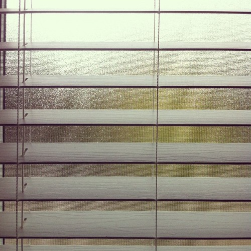 #blinds #window #view #frosted #blurred #line #lines #white #green #minimal #minimalist #minimalove #simple #abstract (Taken with Instagram)
