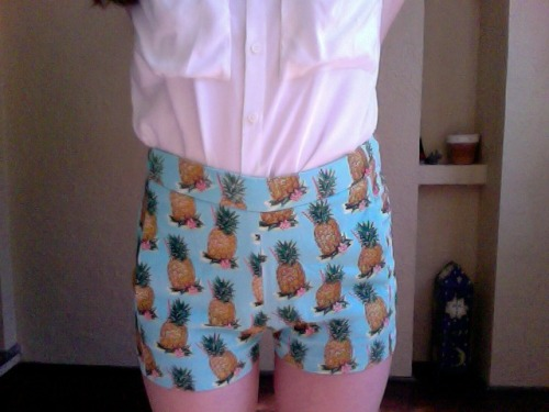 my shorts have pineapples on them your argument is invalid