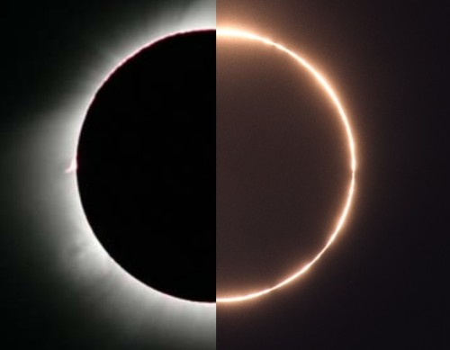 sklogw:  Hybrid Solar Eclipse Credit & Copyright:  Left: Fred Espenak - Right: Stephan Heinsius
