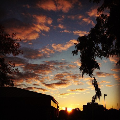 Urban sunrise in Edina this morning.  (Taken with Instagram at Burger King)
