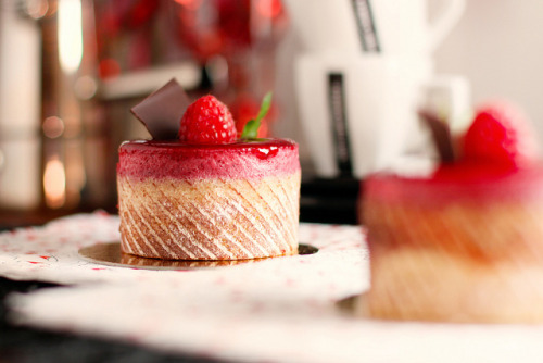 clottedcreamscone:  Berry tarlet (guess the lighting :-) by Vicco Gallo on Flickr.